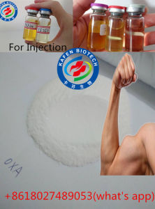 High Purity Bodybuiding Oral Steroids Powder Oxandrolone Anavar 53-39-4