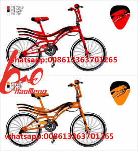 2017newest Special BMX Freestyle Bicycle pictures & photos
