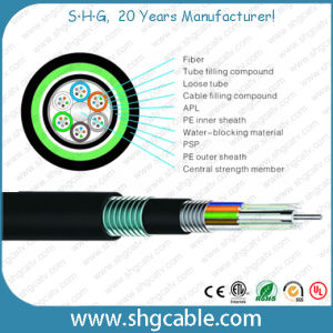 Outdoor Multi Loose Tube Layer Stranded Fiber Optic Cable (GYTA53) pictures & photos