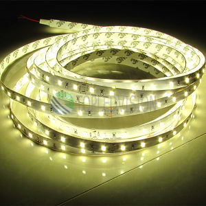 Good Price Bright SMD2835 LED Strip Light pictures & photos