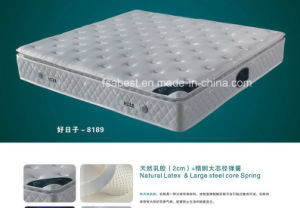 Super Soft Pillow Top Latex Mattress ABS-8189 pictures & photos