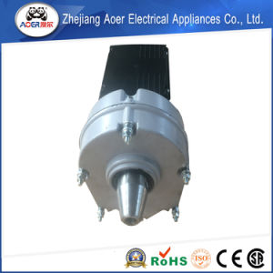 AC Single Phase Asynchronous Gear Motor 230V pictures & photos