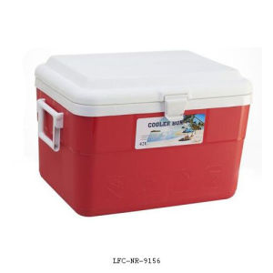 42L Portable Plastic Cooler, Car Cooler Box, Beer Can Cooler pictures & photos