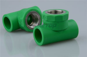 Light Weight Female Tee PPR Fitting with Pn20 pictures & photos