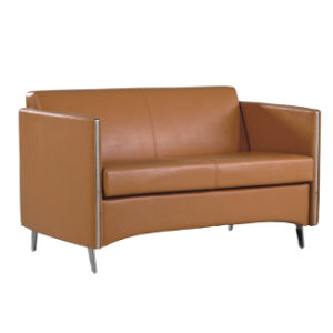 Brown Color Excellent Modern Sofa Set Sectional Sofa Set (FS-638) pictures & photos