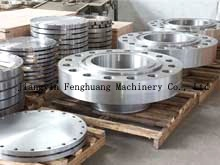 Stainless Steel Minitype Forging Flange pictures & photos