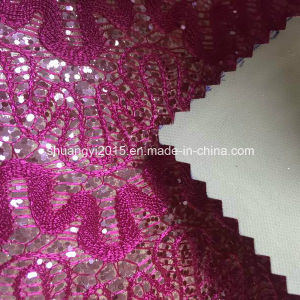 High Quality Lace Glitter for Shoes pictures & photos