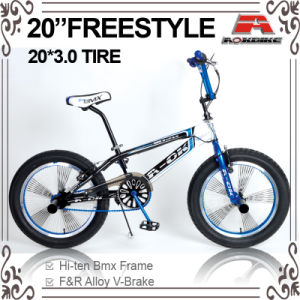 2015 New 7 Fat Tire Freestyle BMX Bike (ABS-2055S) pictures & photos