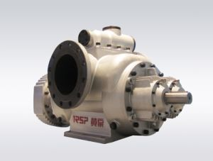 Twin Screw Pump, Double Screw Pump, Unloading Pump, Multiphase Screw Pump pictures & photos