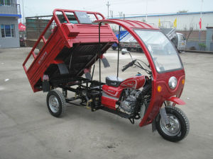3 Cargo Tricycle pictures & photos
