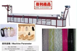 Multi Functional Full Automatic Silicone Lace Coating Machine for Lace Socks Slip Resistance pictures & photos