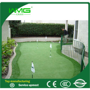 15mm/3500d/ Sport Grass/ Golf Grass/Artificial Grass pictures & photos