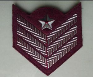 Shoulder Board Customizeds and Epaulet-1 pictures & photos