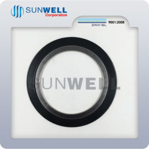 Special Materials Spiral Wound Gaskets pictures & photos