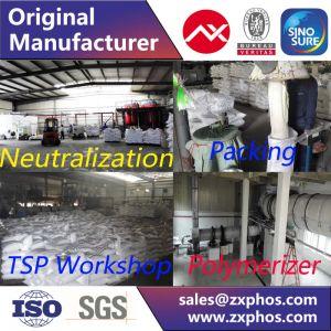 Sodium Hexametaphosphate SHMP pictures & photos