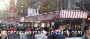 Sunshade PVC Laminated Tarpaulin Fabric Truck Tarpaulin (1000dx1000d 9X9 600g) pictures & photos