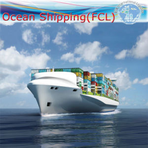 Sea Shipping Full Container Door to Door to Oceania pictures & photos