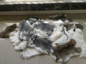 China Wholesale Natural Rabbit Skin with Cheap Price pictures & photos
