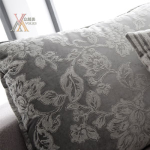 Fabric Sofa with Cushion and Chaise (1608) pictures & photos
