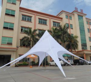 Outdoor Advertising Display Star Tent pictures & photos