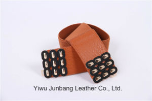 Women′s Popular Elastic Belts