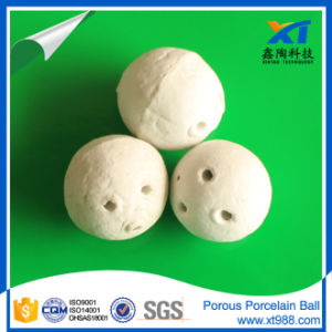 Stock Porous Ceramic Ball--Support Media pictures & photos