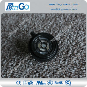 Low Pressure Switch for Water Heater pictures & photos