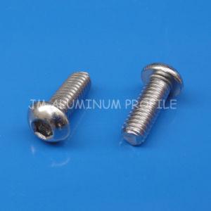 Socket Button Head Cap Screw. Steel pictures & photos
