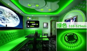 14.4W Ce and Rhos 60SMD3014 Green LED Strip pictures & photos