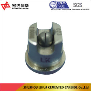 Tungsten Carbide Spray Nozzles for Fuel Injector pictures & photos