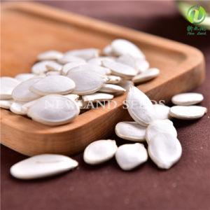 Export to Europe Snow White Green Pumpkin Seeds 13cm/14cm
