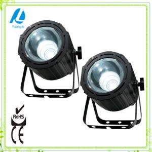 4in1 RGBW Effect Stage Light LED COB PAR (PL-P206)