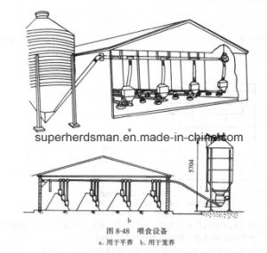 Hot Gavanized Chicken House Silo for Feed Storage pictures & photos