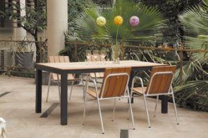 Polywood Chair/Polywood Dining Set