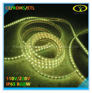 5050SMD RGBW LED Strip Lighting with ETL Approval pictures & photos