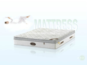 High Quality Pillow Top Latex Foam with Spring Mattress (LS-1) pictures & photos