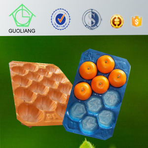 Popular Wholesale Egypt Thermoformed Plastic Perforated Blister Packaging PP Pet Fruit Nest Tray for Melon pictures & photos