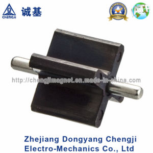 Custom Injection Bonded Rotor Magnet with ISO/Ts16949 Certification