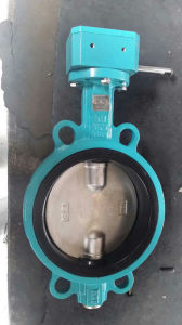 Worm Gear Operated Wafer Type Butterfly Valve pictures & photos