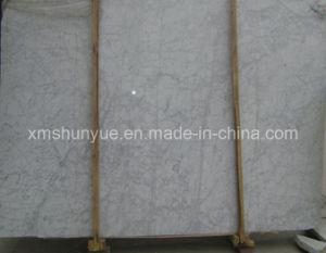 Bianco Carrara Marble Slabs for Floor / Wall/Countertop