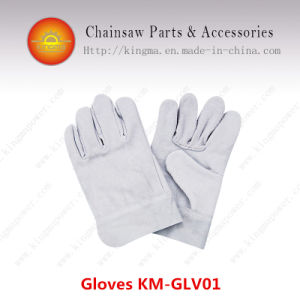 Protective Gloves pictures & photos