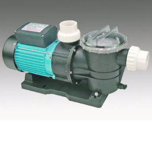 Swimming Pool Pump (FTP-2 DUAL SPEED) pictures & photos