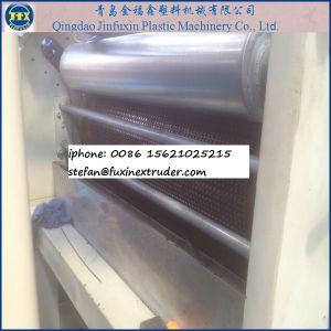 Plastic Door Mat Extrusion Line pictures & photos