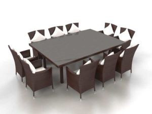 Well Furnir Royal White 10-Seater Dining Rattan Set pictures & photos