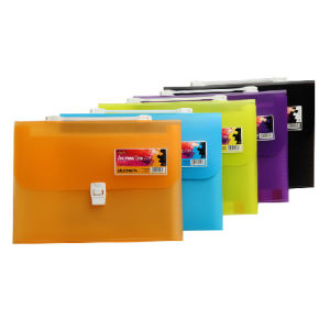 Document Case with Handle (DP00266) pictures & photos