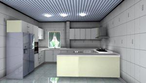 Wooden Kitchen Cabinet (WJ-K111)