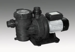 Swimming Pool Pump (SWIM) with CE Approved pictures & photos