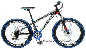 MTB Bike (24MTB1502)