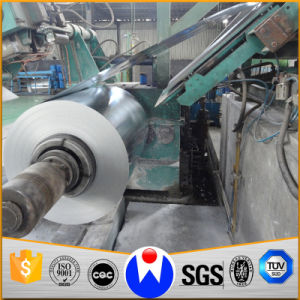 Galvanized Steel Sheet in Coils pictures & photos