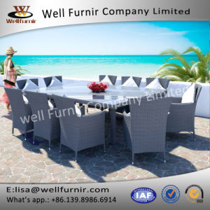 Well Furnir T-062 Royal White 10-Seater Dining Rattan Set pictures & photos